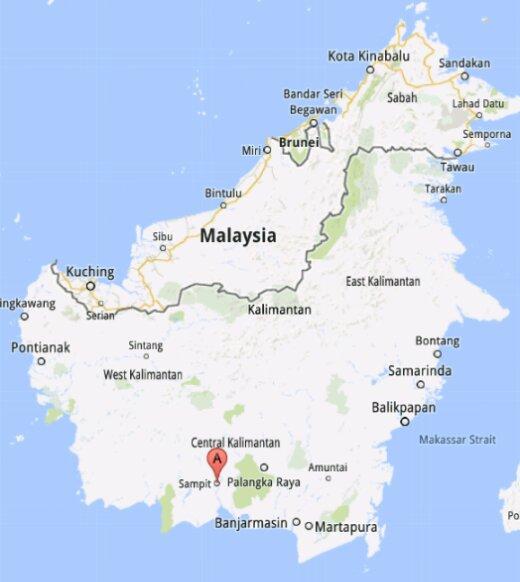 gambar peta pulau kalimantan hitam putih doni gambar peta pulau kalimantan hitam putih