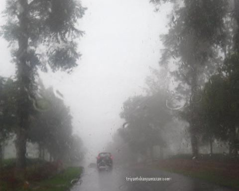 subang hujan dan kabut tebal